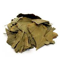 ВЕГА гинкго билоба сушеный лист 100 г