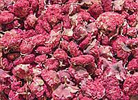 ВЕГА цветок граната сушеный 100 г