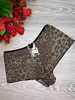 Шортики сеточка леопардовые М 42-44 р. коричневые (8585)