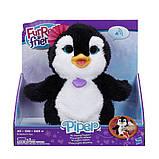 FurReal Friends Интерактивный домашний пингвинчик Смотри на мой танец Happy to See Me Pets Piper My Dancing, фото 4