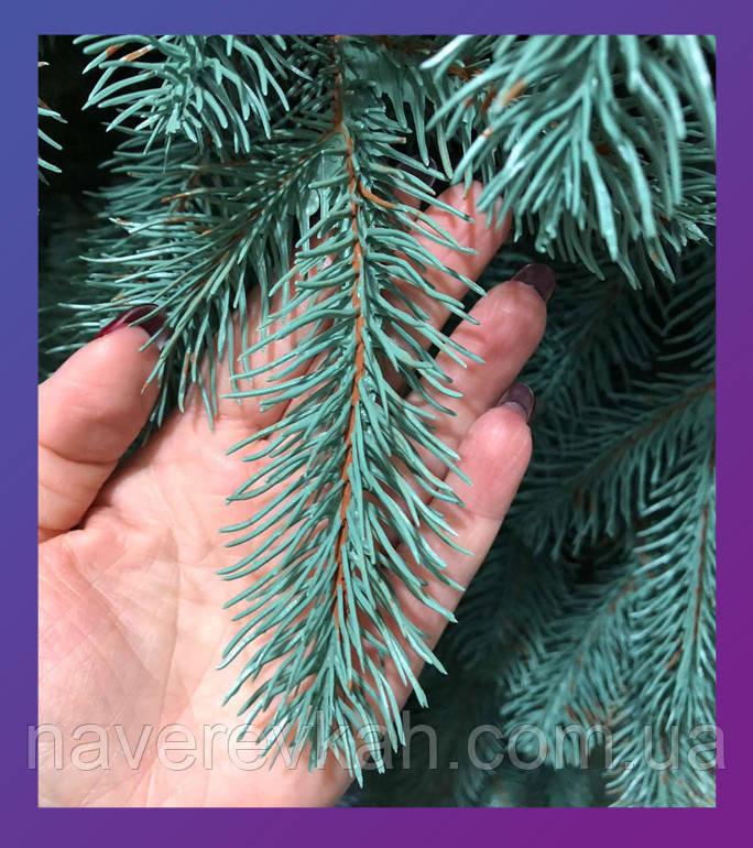 Елка голубая зеленая литая буковельская рояль