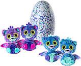 Spin Master Интерактивная игрушка Двойной сюрприз в яйце близнецы котята Hatchimals 6037096 Surprise Playset, фото 7