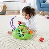 Fisher-Price Музыкальная улитка-сортер Rock 'n Sort Snail Pail Toy Playset, фото 10