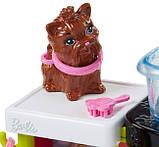 Barbie Барби Парикмахер для питомцев Pet Groomer Doll, фото 4