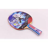 Ракетка для настольного тенниса GIANT DRAGON TAICHI P40+ 3*