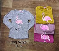 Реглани для дівчаток оптом, Seagull, розміри 8-16 років , арт. CSQ-52569, фото 1