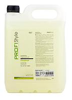 Шампунь для волос Очищающий Profi Style Basic 5000мл
