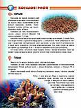 Мешканці морів та океанів. Жабська Т, фото 5
