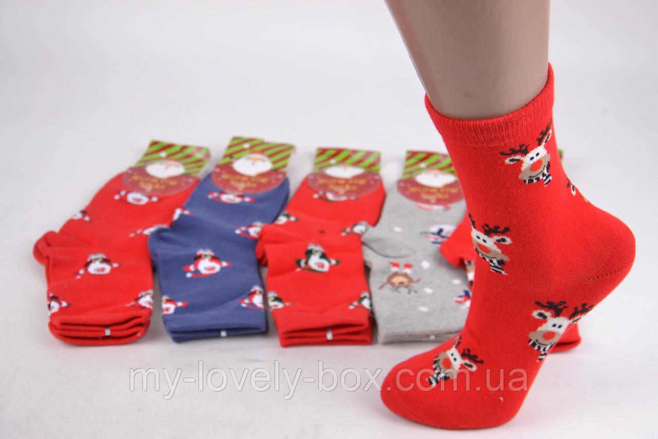 "ОПТОМ.Детские носки ""Aura"" COTTON (Арт. SGZ5617/28-31) | 5 пар"
