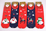 """ОПТОМ.Детские носки """"Aura""""  COTTON (Арт. SG5616)   30 пар, фото 2"""