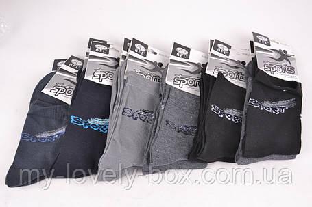 "ОПТОМ.Подростковые носки ""SPORT"" ХЛОПОК (Арт. B432)    12 пар, фото 2"