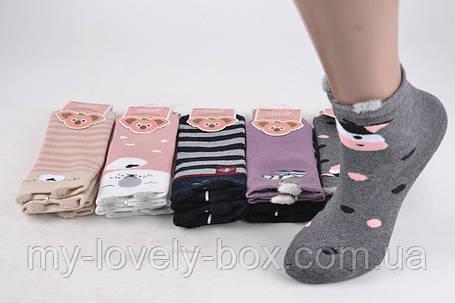 "ОПТОМ.Детские носки ""Фенна"" ХЛОПОК (Арт. FEC044/5-6) | 10 пар, фото 2"