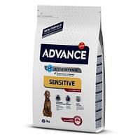 Сухой корм Advance Dog Med/Maxi Sensitive Lamb&Rice для взрослых собак средних/крупных пород 3 кг