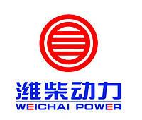 Запчасти для двигателя WD615 / WD10 (Weichai power)