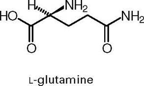 На развес L-глютамин (100 г)