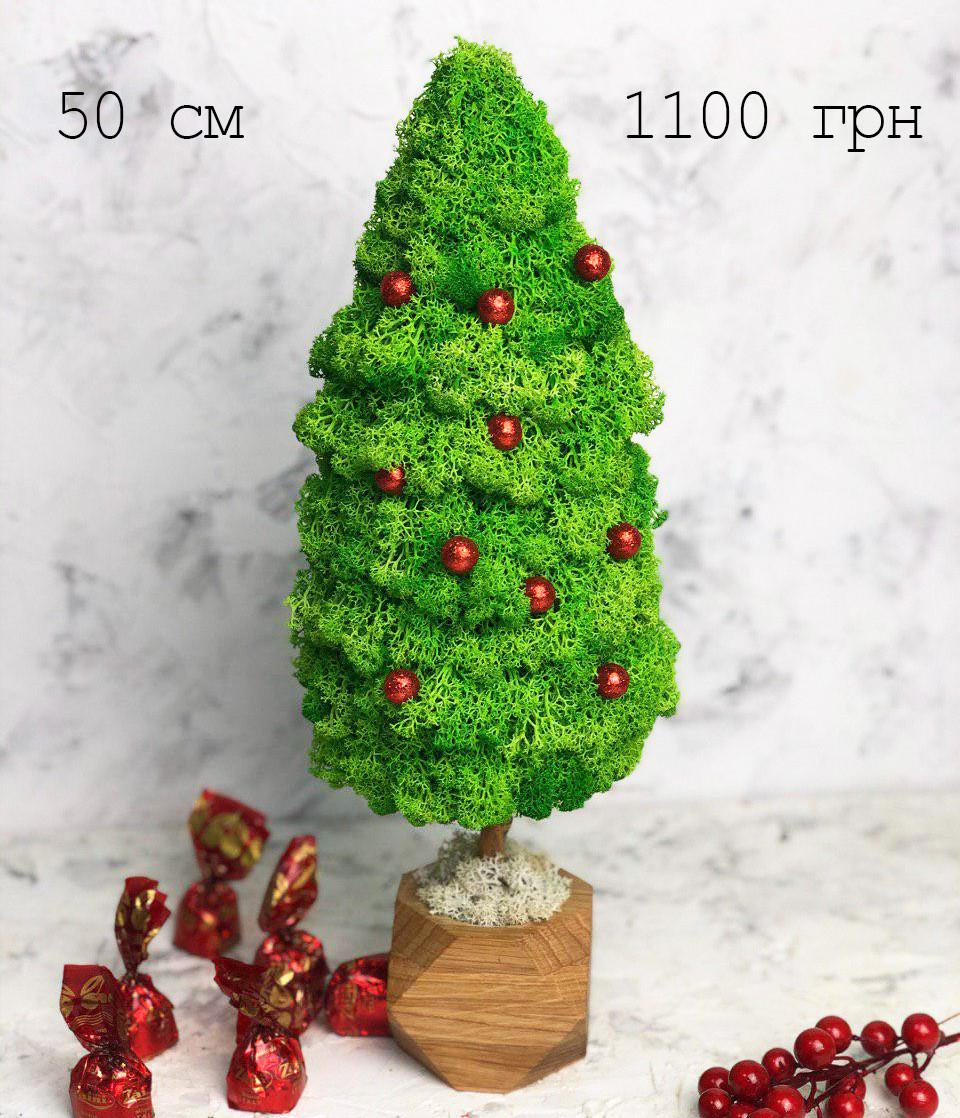 Эко-дерево из живого мха 50 см