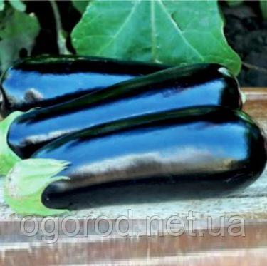Анатолія F1 10 шт насіння баклажан Rijk Zwaan, Голландія
