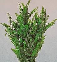 Растение искусственное AL-150С, 60 см