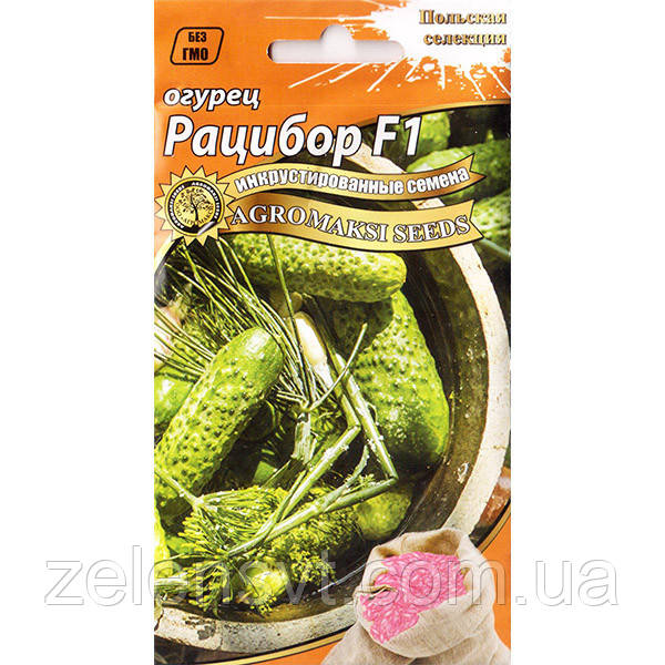 Насіння огірка «Рацібор» F1 (5 г) від Agromaksi seeds