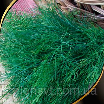 "Насіння кропу ""Ажур"" (3 г) від Agromaksi seeds"