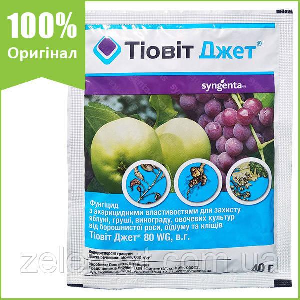 """Фунгіцид """"Тіовіт Джет"""" для винограду, яблуні, груші, огірків і капусти, 40 г, від Syngenta (оригінал)"""