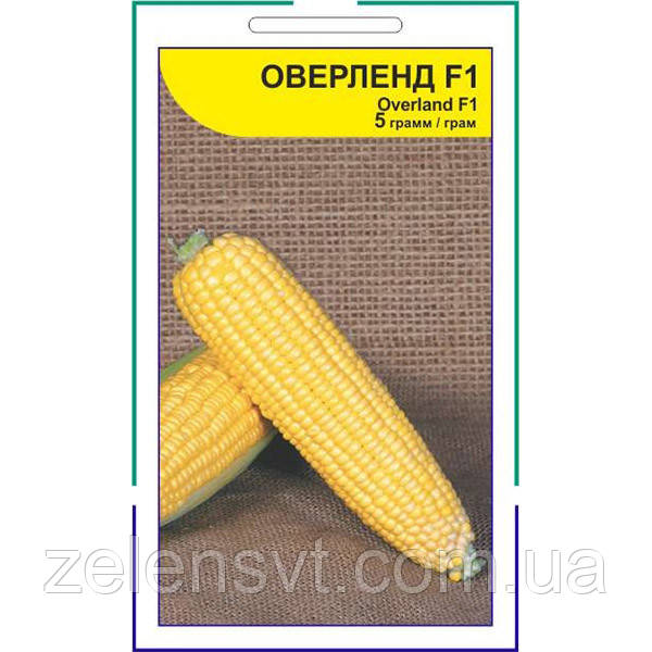 """Насіння кукурудзи """"Оверленд"""" F1 (5 г) від Syngenta"""
