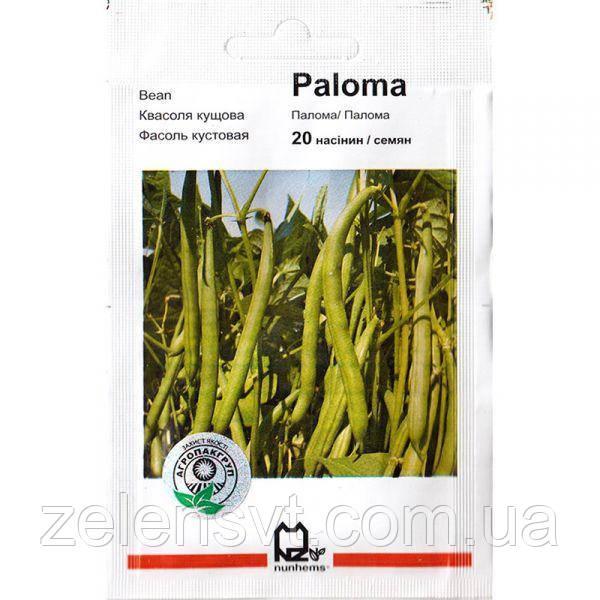 Насіння квасолі «Палома» (20 насіння) від Nunhems
