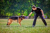 PULLER Standard тренировочный снаряд для средних и крупных пород собак, Ø28 см, фото 2