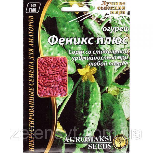 Насіння огірка «Фенікс плюс» (4 г) від Agromaksi seeds