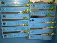 Качественная доставка в почтовые ящики Киева от 25 коп/шт! Полный отчет по домам, фотоотчет.