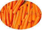 Морковь Нантэ тип - Люсия F1 -  Agri Saaten