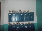 Акция! В Чернигове качественная доставка в почтовые ящики от 15 коп/шт! Полный отчет по домам