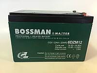 Аккумуляторы к электровелосипедам BOSSMAN 6DZM12
