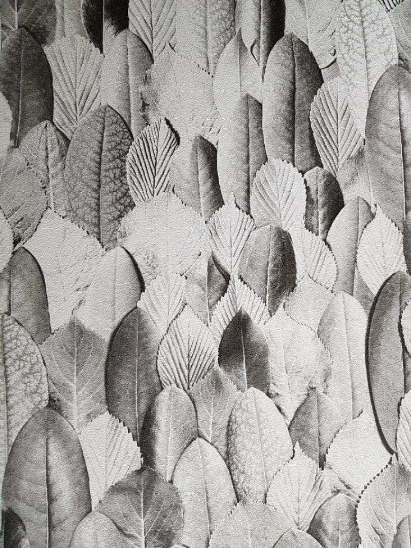 Шпалери вінілові на флізелін Marburg 31736 Imagine листя білі сірі чорні