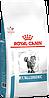 Корм Роял Канин Аналлергеник Royal Canin Anallergenic для кішок при алергії 2 кг