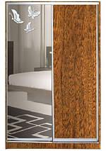 Шкаф-купе Стандарт двухдверный ДСП + зеркало + пескоструй на 1 двери, фото 2