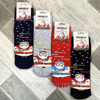 Шкарпетки чоловічі махрові бавовна Новий рік Мirabello, 40-45 розмір, асорті, 0509