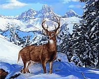 Раскраска по цифрам Благородный олень Худ Вилсон Эрик (VP474) 40 х 50 см