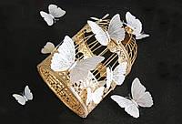 Бабочки 3D белые Блеск на магните 12 шт. в комплекте, белые, фото 1