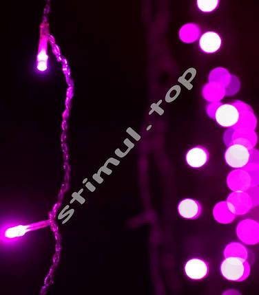 Гирлянда LED нить ➤ 300 LED ➤ Світлодіодна гірлянда фіолетова ➤ Гирлянда пурпурная с прозрачным проводом, фото 2