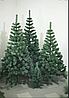 Елка искусственная 1.3 метра Карпатская/Сказка Новогодняя елка, искусственная ель. Штучна ялинка сосна (ПВХ), фото 8