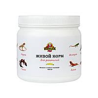 Живой корм для рептилий – Огнёвка пчелиная 500 шт.