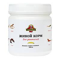 Живой корм для рептилий – Огнёвка пчелиная 250 шт.
