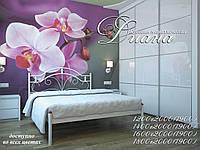 Металлическая кровать Диана. ТМ Металл-Дизайн, фото 1