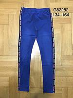 Лосины под джинс  для девочки 134/164 см
