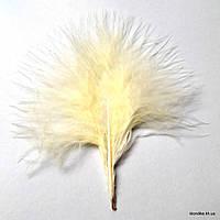 Перья декоративные, 8-12 см, Цвет: Бледно-желтый (20 шт.)