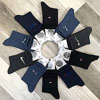 Носки детские махровые хлопок Классик, Рубежное, 23 размер, ассорти, 0504