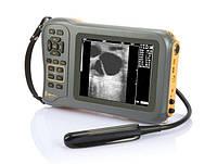 Ветеринарные ультразвуковые сканеры BMW