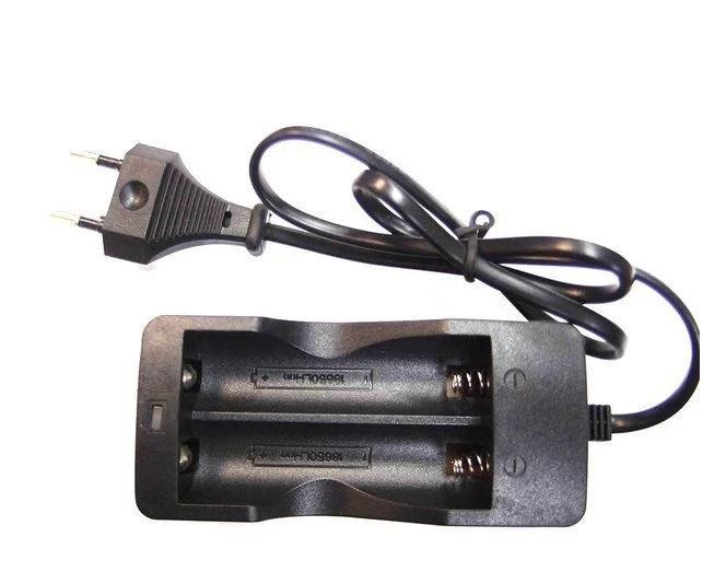 Зарядное устройство на 2x18650 от сети 220V DOUBLE только ящиком