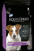 Equilibrio для малых пород собак